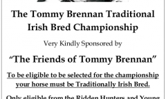 the-tommy-brennan-traditional-irish-bred-championship